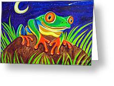 Red-eyed Tree Frog And Starry Night Greeting Card by Nick Gustafson