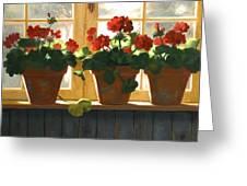 Red Geraniums Basking Greeting Card by Linda Jacobus