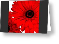Red Gerber Border     Digital Art  Greeting Card by Marsha Heiken