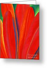 Red Petals Greeting Card by Lucy Arnold