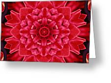 Red Rose Kaleidoscope Greeting Card by Cathie Tyler