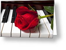 Red rose on piano keys Greeting Card by Garry Gay