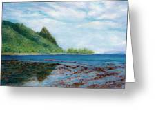 Reef Walk Greeting Card by Kenneth Grzesik