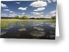 Reflecting Clouds - Jim River Valley Greeting Card by Patrick Ziegler
