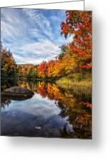 Reflections Of Fall Greeting Card by Mark Papke