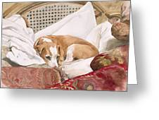 Regal Beagle Greeting Card by Debra Jones