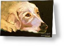 Rescued Golden Greeting Card by Susan A Becker