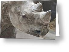 Rhinoceros Greeting Card by Tom Mc Nemar