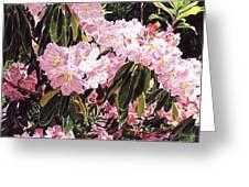 Rhodo Grove Greeting Card by David Lloyd Glover