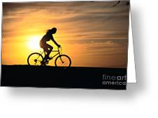 Riding At Sunset Greeting Card by Dave Fleetham - Printscapes