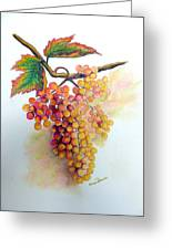 Ripe Muscats Greeting Card by Karin Kelshall- Best