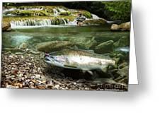 River Chrome Greeting Card by Alex Suescun