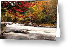 River Rapids Fall Nature Scenery Greeting Card by Oleksiy Maksymenko