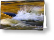 River Greeting Card by Silke Magino