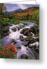 River Sounds Greeting Card by David Lloyd Glover