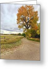 Road To Dads Place Greeting Card by James Steele