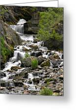Roadside Mountain Stream Greeting Card by Mike McGlothlen