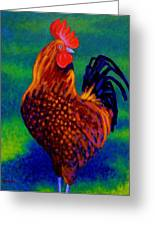 Rooster Greeting Card by John  Nolan