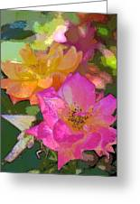 Rose 114 Greeting Card by Pamela Cooper
