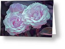 Rose 118 Greeting Card by Pamela Cooper