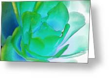 Rose Sea Greeting Card by Lynne Furrer