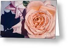 Rose Splendour Greeting Card by Kerryn Madsen-Pietsch