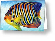 Royal Queen Angelfish Greeting Card by Nancy Tilles