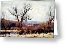 Rustic Reflections Greeting Card by Janine Riley