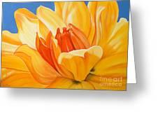 Saffron Splendour Greeting Card by Colleen Brown