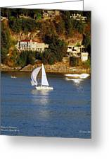 Sailboat In Vancouver Greeting Card by Robert Meanor