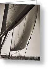 Sailing Beneteau 49 Sloop Greeting Card by Dustin K Ryan