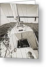 Sailing Sailboat Charleston Sc Bridge Greeting Card by Dustin K Ryan