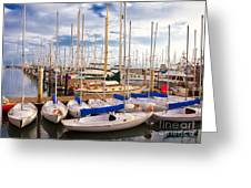 Sailoats Docked in Marina Greeting Card by David Buffington
