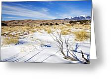 Sand And Snow Greeting Card by Mike  Dawson