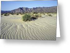 Sand Dunes & San Ysidro Mountains At El Greeting Card by Rich Reid