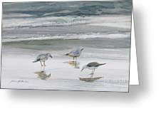 Sandpipers Greeting Card by Julianne Felton