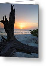 Sanibel Sunrise II Greeting Card by Steven Ainsworth