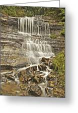 Scenic Alger Falls  Greeting Card by Michael Peychich