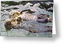 Sea Otters Holding Hands Greeting Card by BuffaloWorks Photography