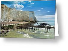 Seaford Cliffs Greeting Card by Donald Davis