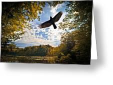 Season Of Change Greeting Card by Bob Orsillo