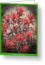 Seasons Greetings 2010 Greeting Card by Daniel Hebard
