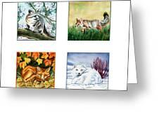 Seasons Of Fox Greeting Card by Antony Galbraith