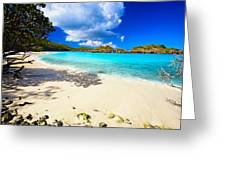 Secluded  Beach Greeting Card by George Oze