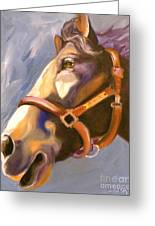 Seize The Day Greeting Card by Susan A Becker