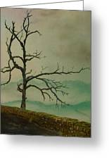 Sentinel Of The Shenandoah Greeting Card by Nicole Angell