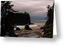 Serene And Pure - Ruby Beach - Olympic Peninsula Wa Greeting Card by Christine Till