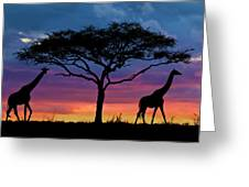 Serengeti Sunset Greeting Card by Stu  Porter