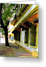 Shady Street By Darian Day Greeting Card by Olden Mexico