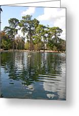 Shalom Reflections 2 Greeting Card by Warren Thompson